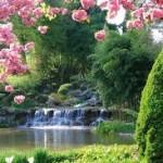 Parc floral au MIA