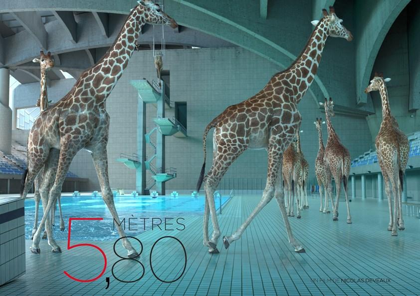 5-metres-80