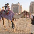 halal-qatar-festival